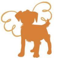 Angels for Dogs e.V. – gemeinnütziger Tierschutzverein